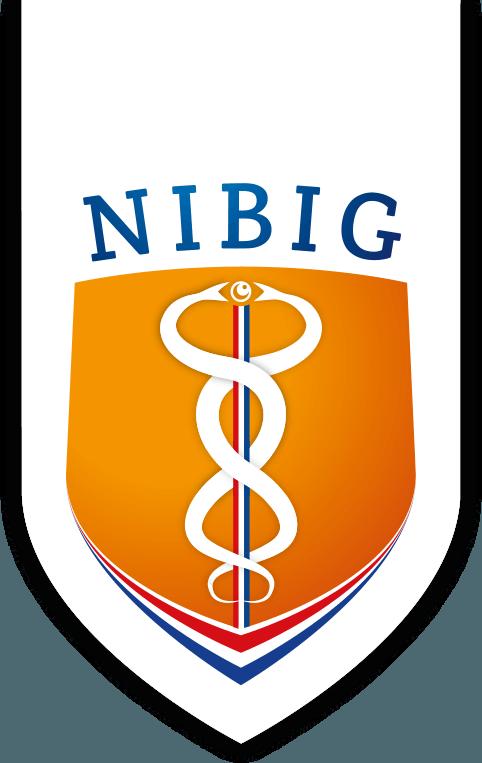 logo nibig